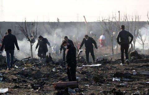 İran təyyarə istintaqın başa çatdırdı